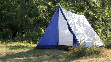 camping - tent in forest