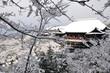 Kiyomizu-dera during winter time in Kyoto