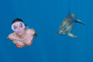 Beautiful blonde girl approached by a dolphin