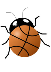 Basketball bug