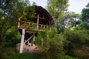Hut in a Philippino jungle