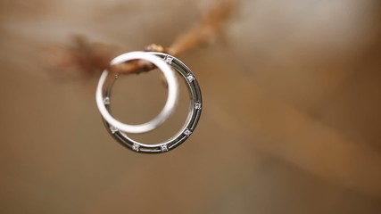 Wedding rings on a tree branch. Macro lens