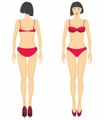 Vector illustration of woman's figure. Dummy.