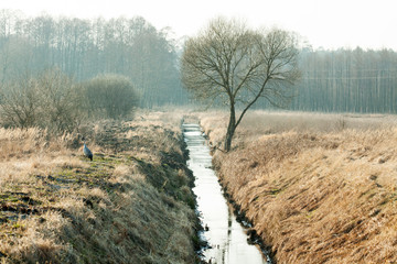 drainage channel running through a meadow