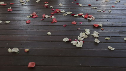Petals of roses on a timber floor. HD shot with slider