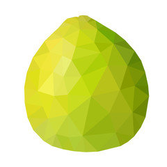 Vector low poly green pomelo