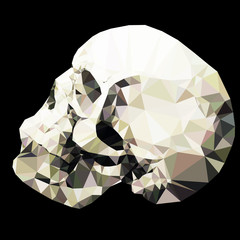 Vector low poly crystal skull