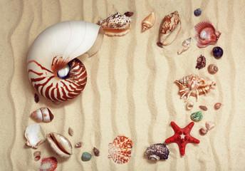 Фоторамка, фон из ракушек на песке.