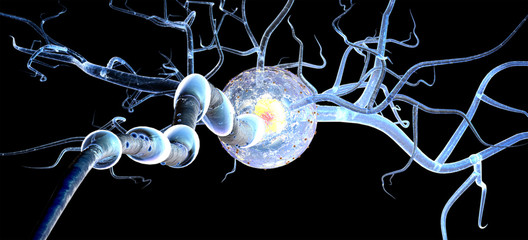 neuron isolated on black background
