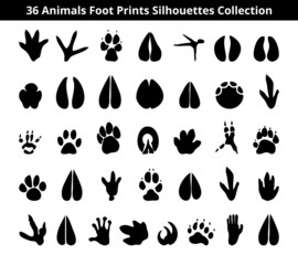 animals foot prints silhouettes collection