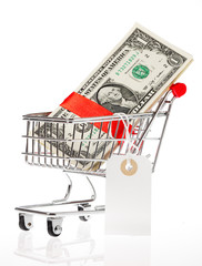 Shoping cart with money