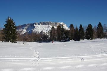 plateau nordique de la féclaz-savoie