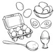 Set of eggs drawings. Hand drawn. Vector illustration. - 78076864