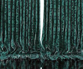 Fondo viejas cortinas retro.Tela vintage de flores