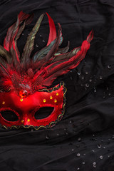 Red venetian carnival mask with feather over black