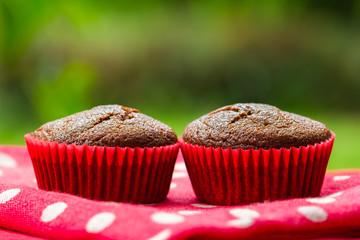 Healthy snack coconut flour gluten free cupcakes