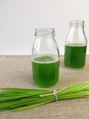 Grüner Smoothie mit Hafergras