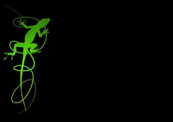 Lizard - Geko - Eidechse