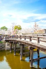 桜とお城の橋