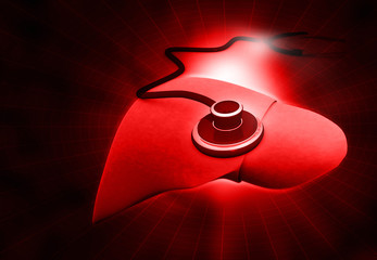 3d render of Human Liver red background