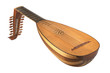lute on white background - 78097800