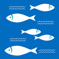 White fishes in the blue sea