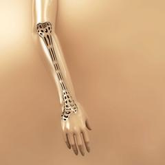 Knochen brüchig - 3d Render