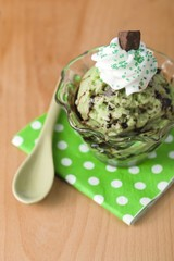 mint chocolate chip ice cream with whipped cream and syrup
