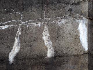Schimmel an der Wand