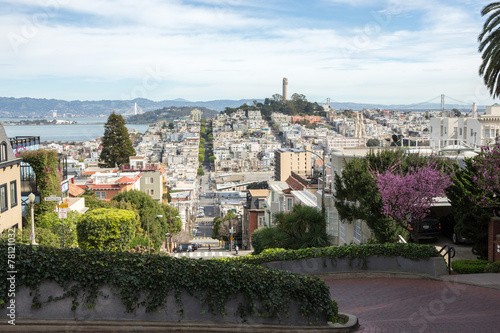 Poster, Tablou San Francisco downtown view from Lombard street