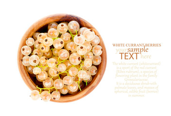 White currant fruit in a wood bowl, isolated over white backgrou
