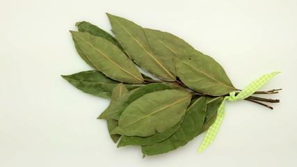 bay leaf tracking on white