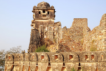 Cittorgarh Fort, India