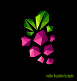 Vector bunch of grapes on a black background