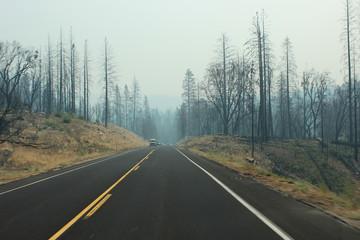 Yosemitte fire