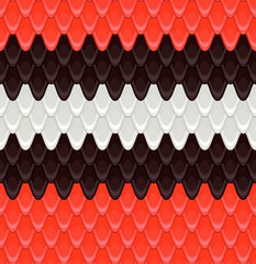pattern the scales scarlet kingsnake