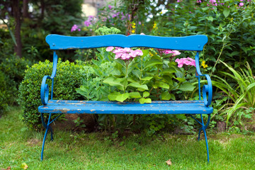 Old Blue Bench at the Garden.