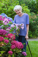 Old Woman with Cane Posing Beside Pretty Flowers.