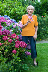 Old Woman with Cane Holding Flowers at the Garden.