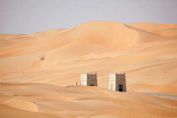 Dunes in the Liwa Desert, Abu Dhabi, United Arab Emirates