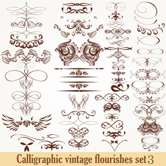 Collection of vector calligraphic decorative flourishes in vinta
