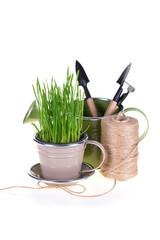 Green grass and garden tools