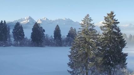 Luftaufnahme Berge mit Baum in Winterlandschaft