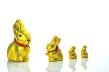 Easter chocolate bunnies lined up on white background