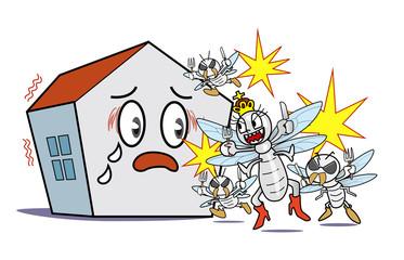 Scary termite