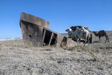 корабль в пустыне,