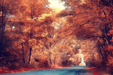 golden autumn landscape Indian summer