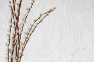 Ostern - 002 - Zweige