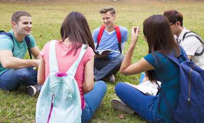 College students studying and discuss together in campus