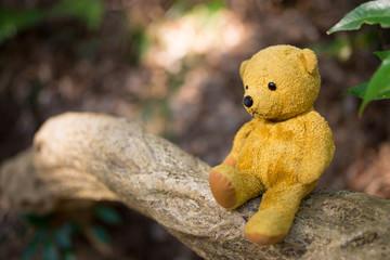 木の枝に座る熊の縫い包み